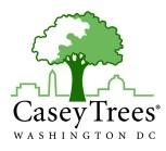 CaseyTreesV